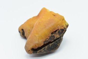 bursztyn bałtycki kolekcjonerski naturalny 130 g