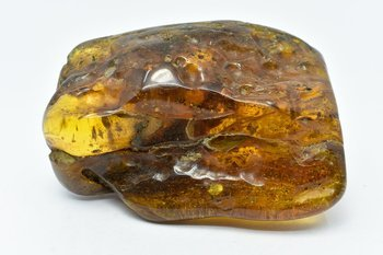 bursztyn bałtycki kolekcjonerski naturalny 168 g