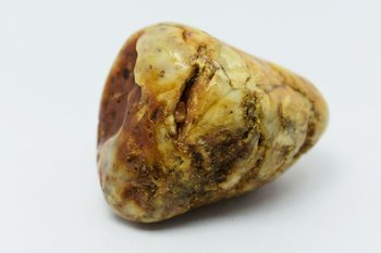 bursztyn bałtycki kolekcjonerski naturalny 64 g