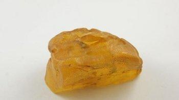 bursztyn bałtycki naturalny kolekcjonerski surowy 88,9 g
