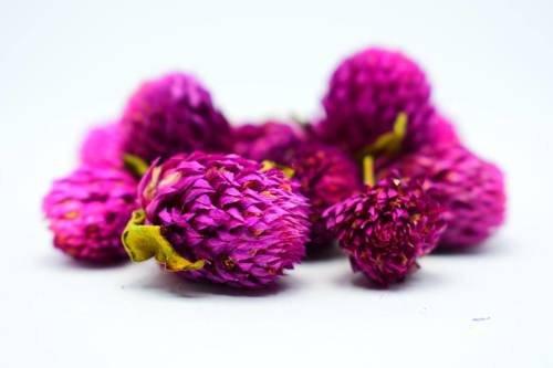 Suszone kwiaty gomfrena kulista do świec 20szt.