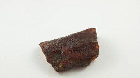 bursztyn bałtycki piwny polerowany szlifowany 28,3 g