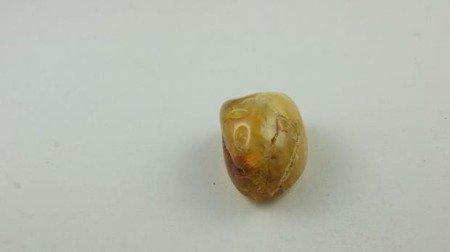 bursztyn bałtycki spękania żółty biały inkluzje 6,8 g