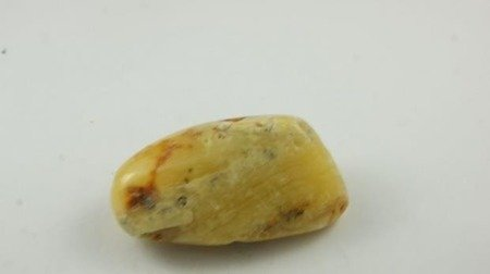bursztyn bałtycki żółty przeźroczysty inkluzje 27,0 g